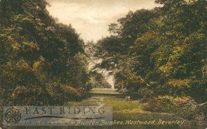 Westwood, Burton Bushes, Beverley 1904
