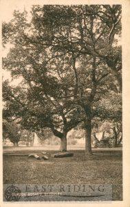 Westwood, Burton Bushes, Beverley 1910