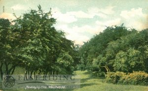 Westwood, Newbegin Pits, Beverley 1905