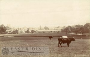 Westwood, from north west, with Hurn in foreground, Beverley 1910