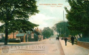 Cottingham Road, Hull 1905