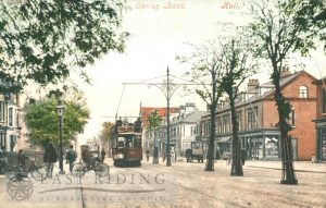 Spring Bank, Hull 1905